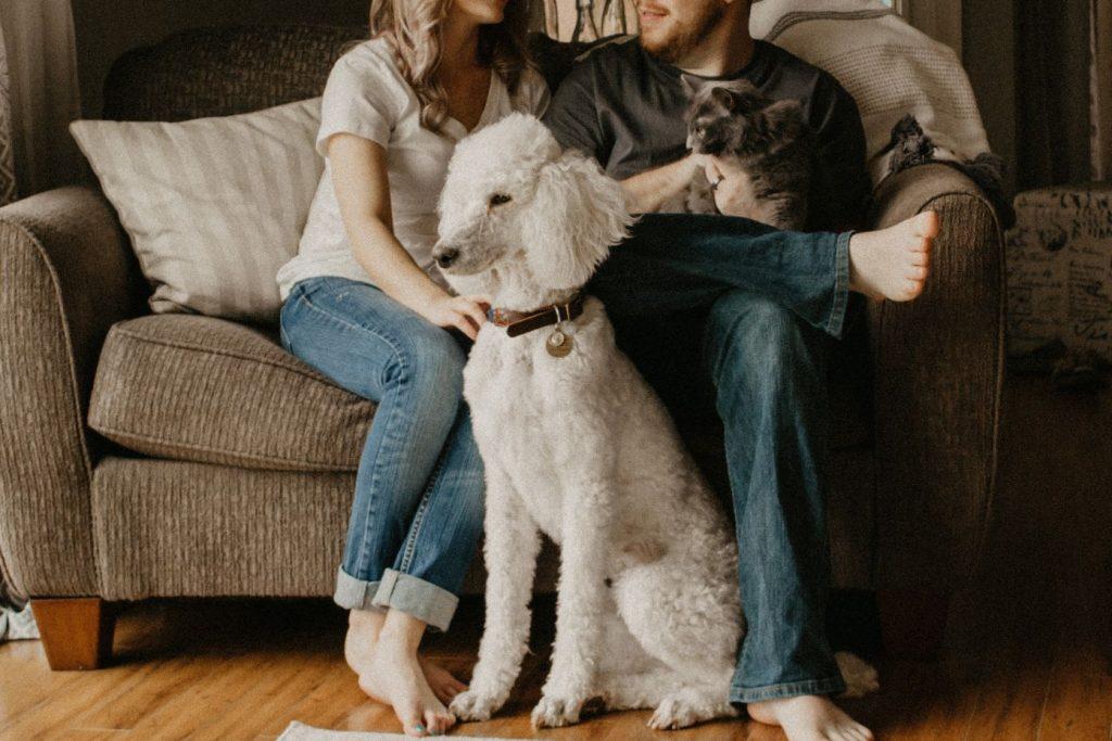 new hampshire condo insurance content image